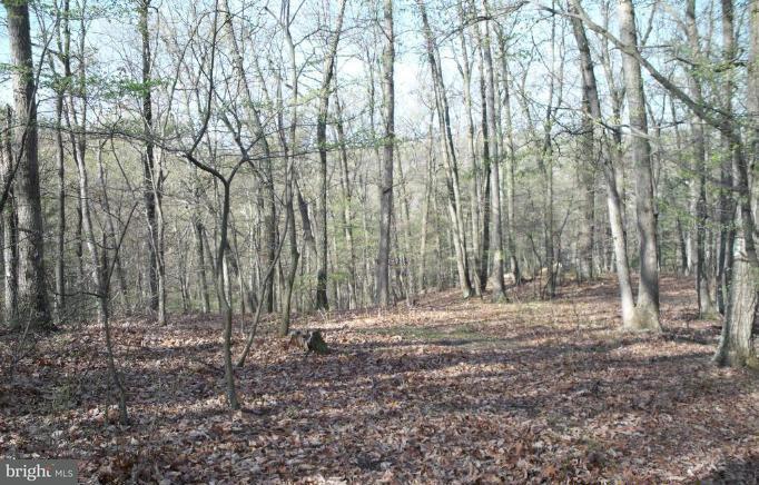 Land for Sale at Pious Ridge Henderson Hei Berkeley Springs, West Virginia 25411 United States