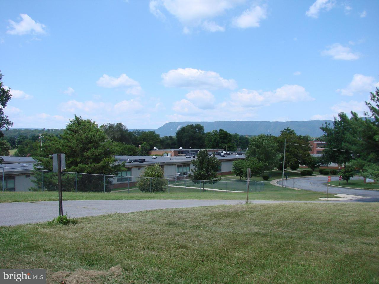 Additional photo for property listing at 513 Third St  Luray, Virginia 22835 United States