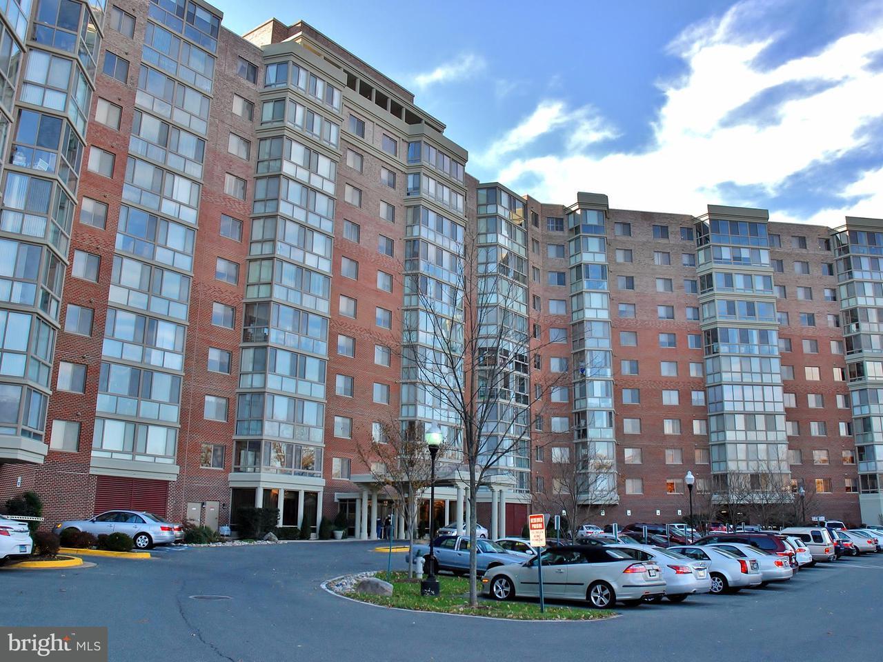Condomínio para Venda às 3100 Leisure World Blvd N #422 3100 Leisure World Blvd N #422 Silver Spring, Maryland 20906 Estados Unidos