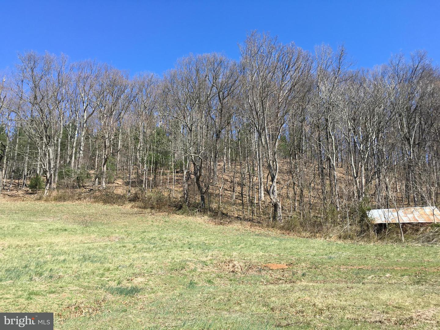 Land for Sale at Sperryville Pike Woodville, Virginia 22749 United States