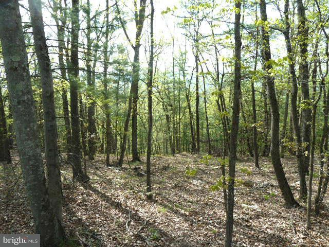 Land for Sale at Supinlick Ridge Rd Mount Jackson, Virginia 22842 United States