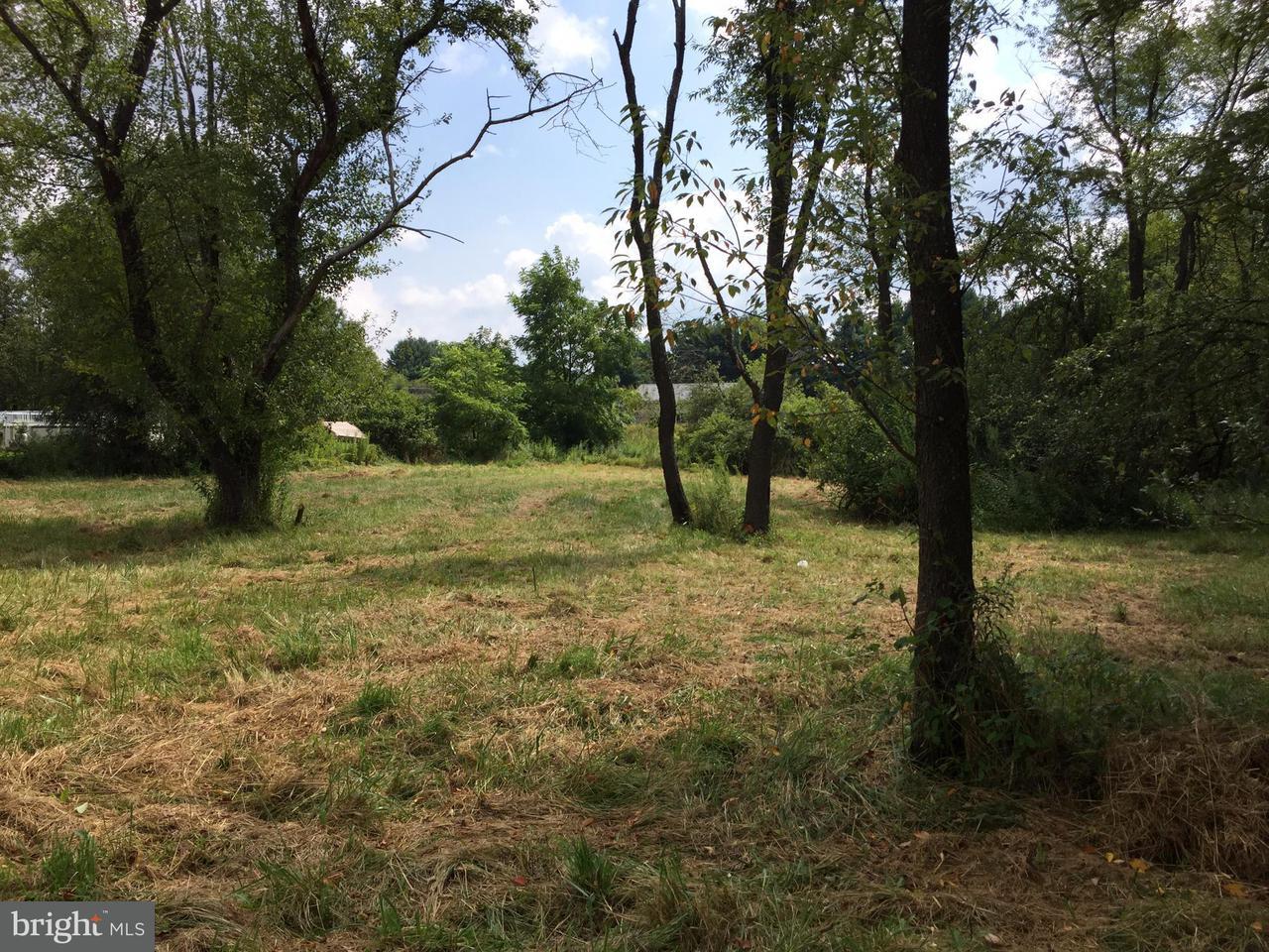 Land for Sale at 210 Mingo Ave Mountain Lake Park, Maryland 21550 United States