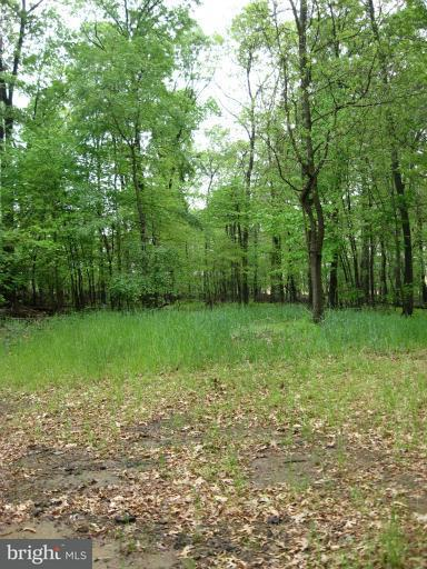 Additional photo for property listing at Lieb Rd  Parkton, Maryland 21120 United States