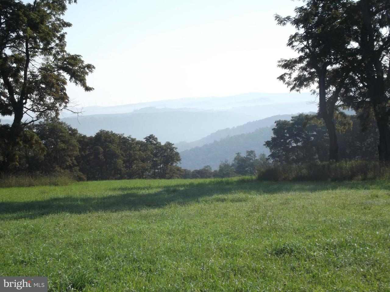 Land for Sale at Schell Rd Elk Garden, West Virginia 26717 United States