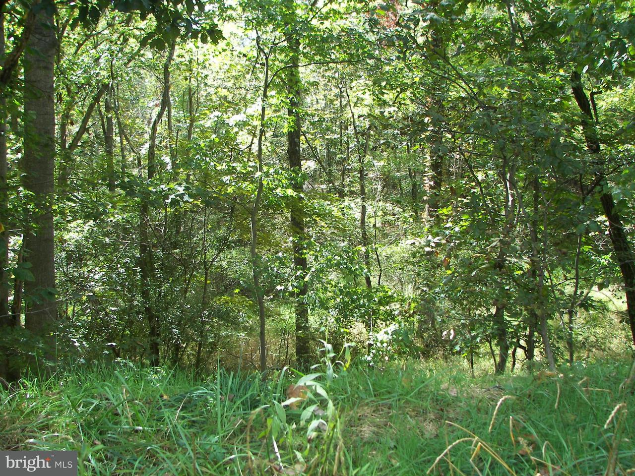 Additional photo for property listing at Mesner Rd  Berkeley Springs, West Virginia 25411 United States