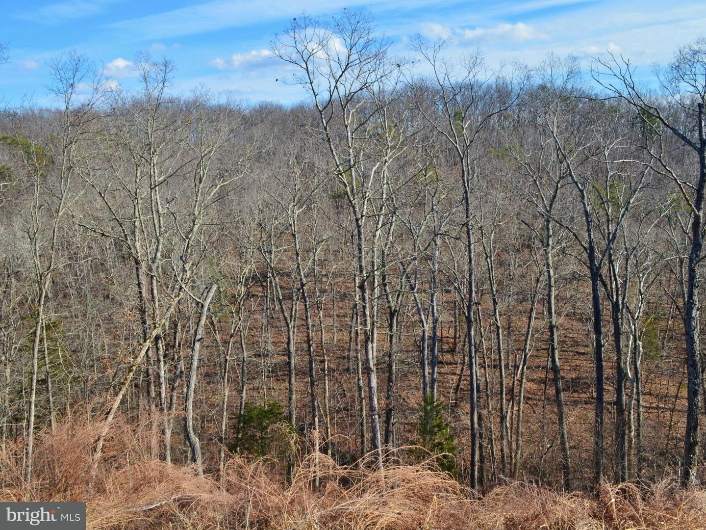 Land for Sale at Lot 24 Gafia Lodge Rd Middletown, Virginia 22645 United States