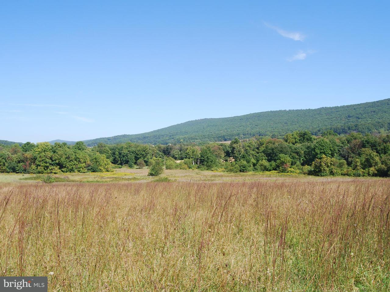Land for Sale at 4106 South Mount Ct Rohrersville, Maryland 21779 United States