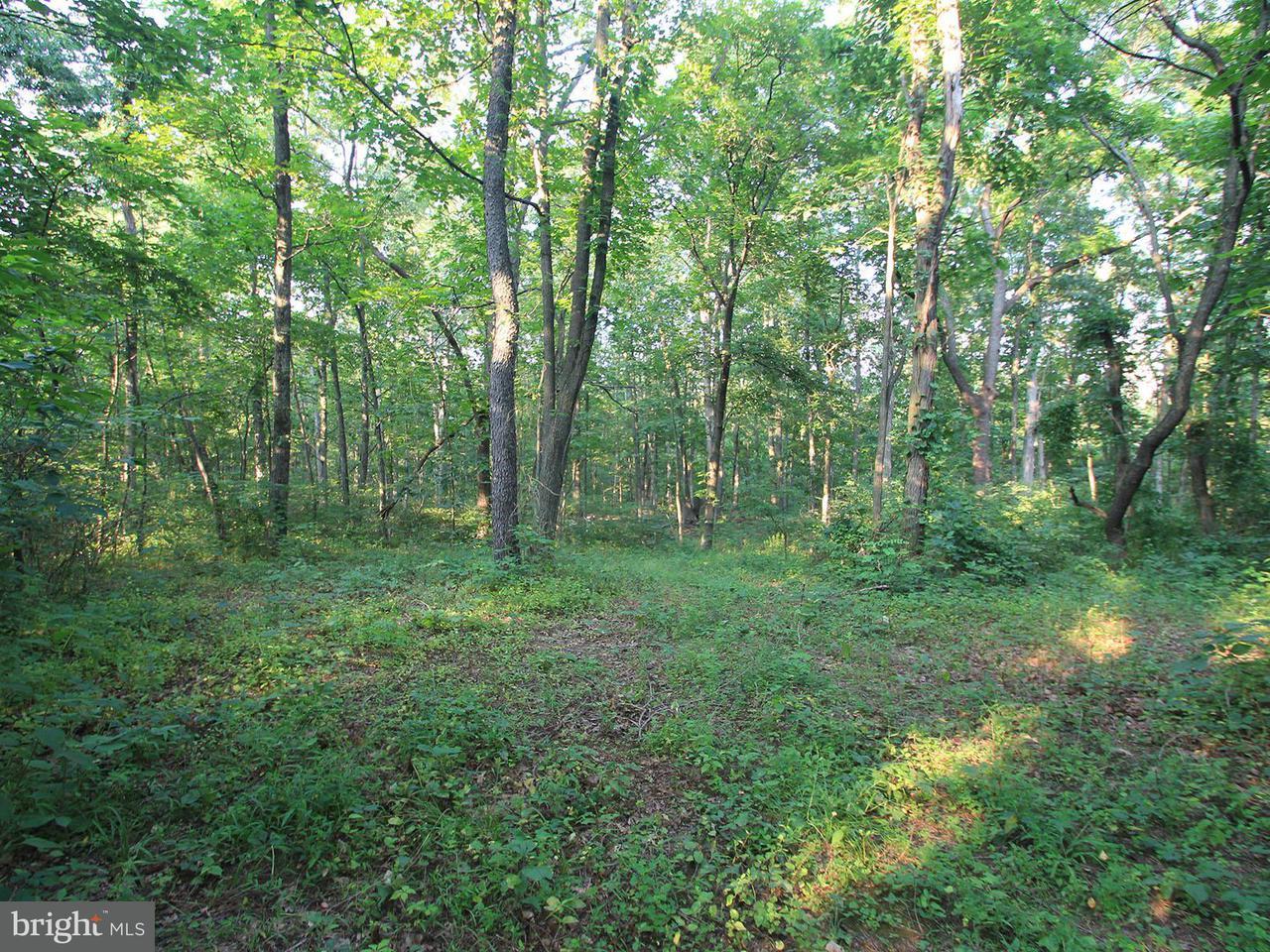 Land for Sale at Carpenter Ln Newburg, Pennsylvania 17240 United States