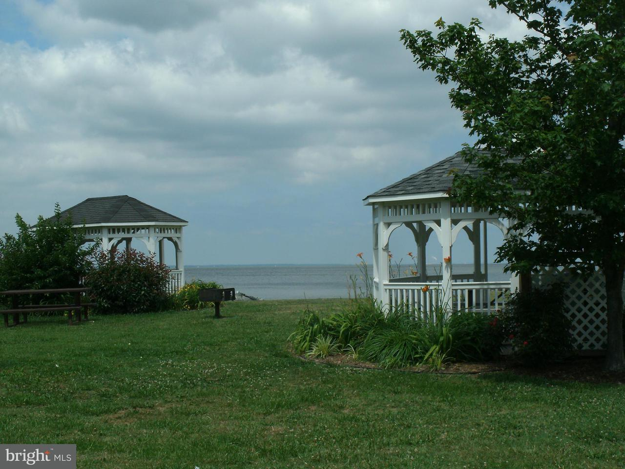 Additional photo for property listing at 21135 Striper Run  Rock Hall, Maryland 21661 United States