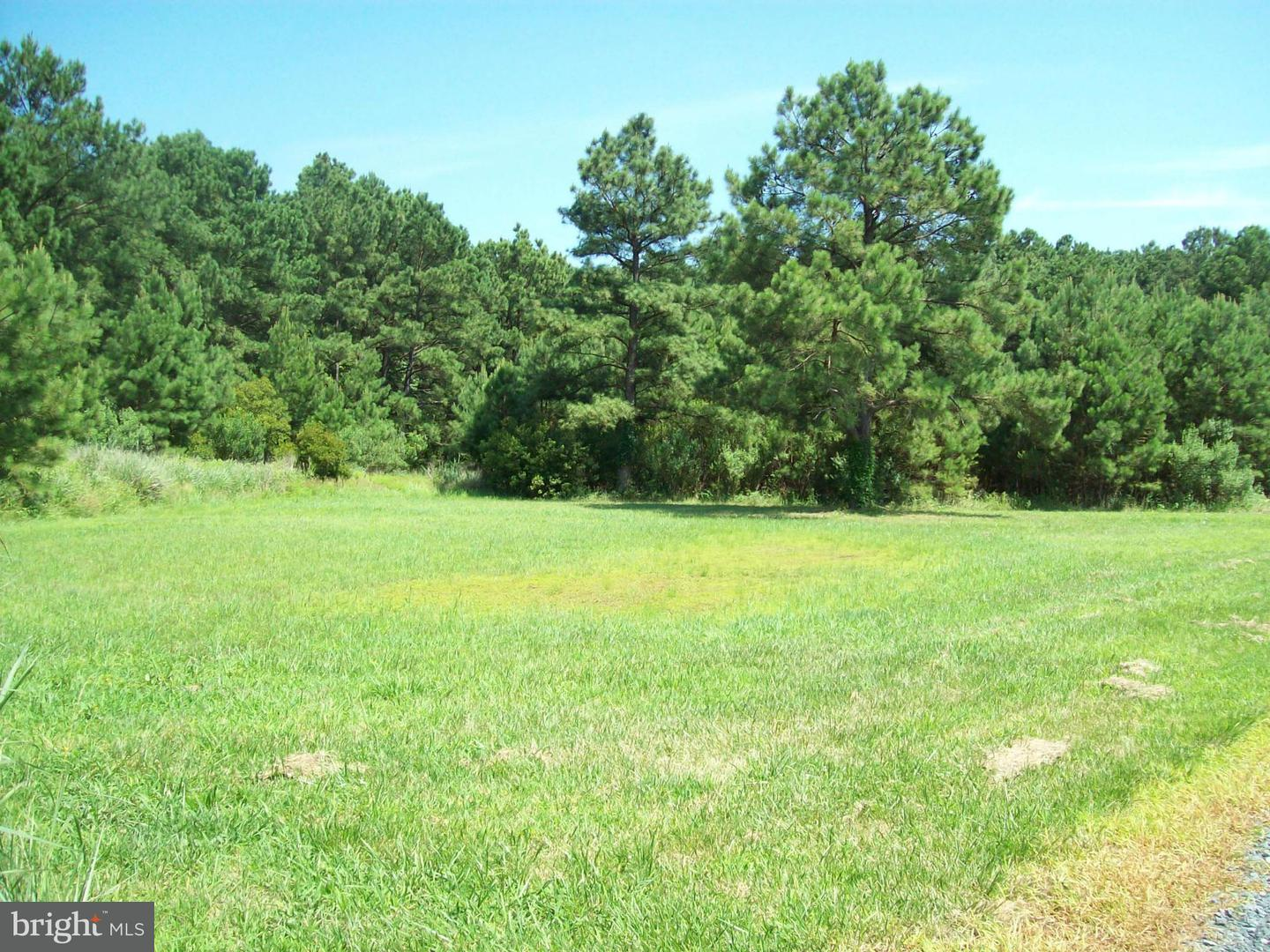 Land for Sale at 5900 Heather Ln Cambridge, Maryland 21613 United States