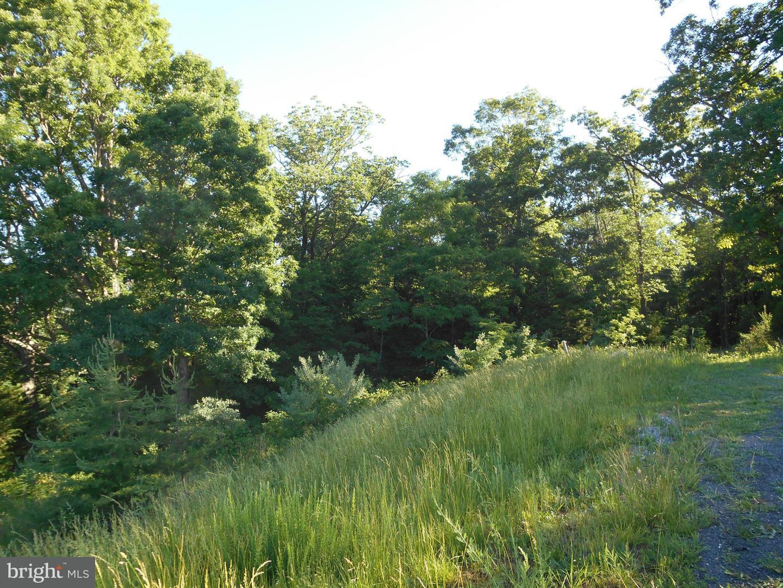 Land for Sale at Lot 34 Savanna Dr Strasburg, Virginia 22657 United States