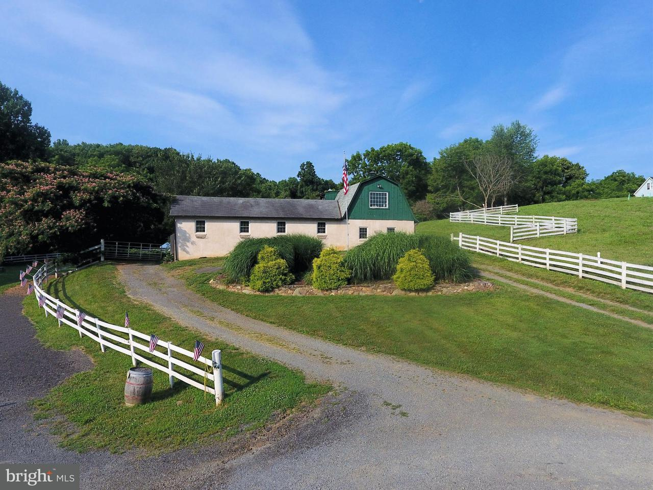Villa per Vendita alle ore 18195 Dry Mill Road 18195 Dry Mill Road Leesburg, Virginia 20175 Stati Uniti