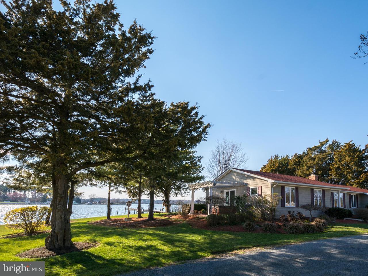 獨棟家庭住宅 為 出售 在 16185 Bradburn Lane 16185 Bradburn Lane Ridge, 馬里蘭州 20680 美國