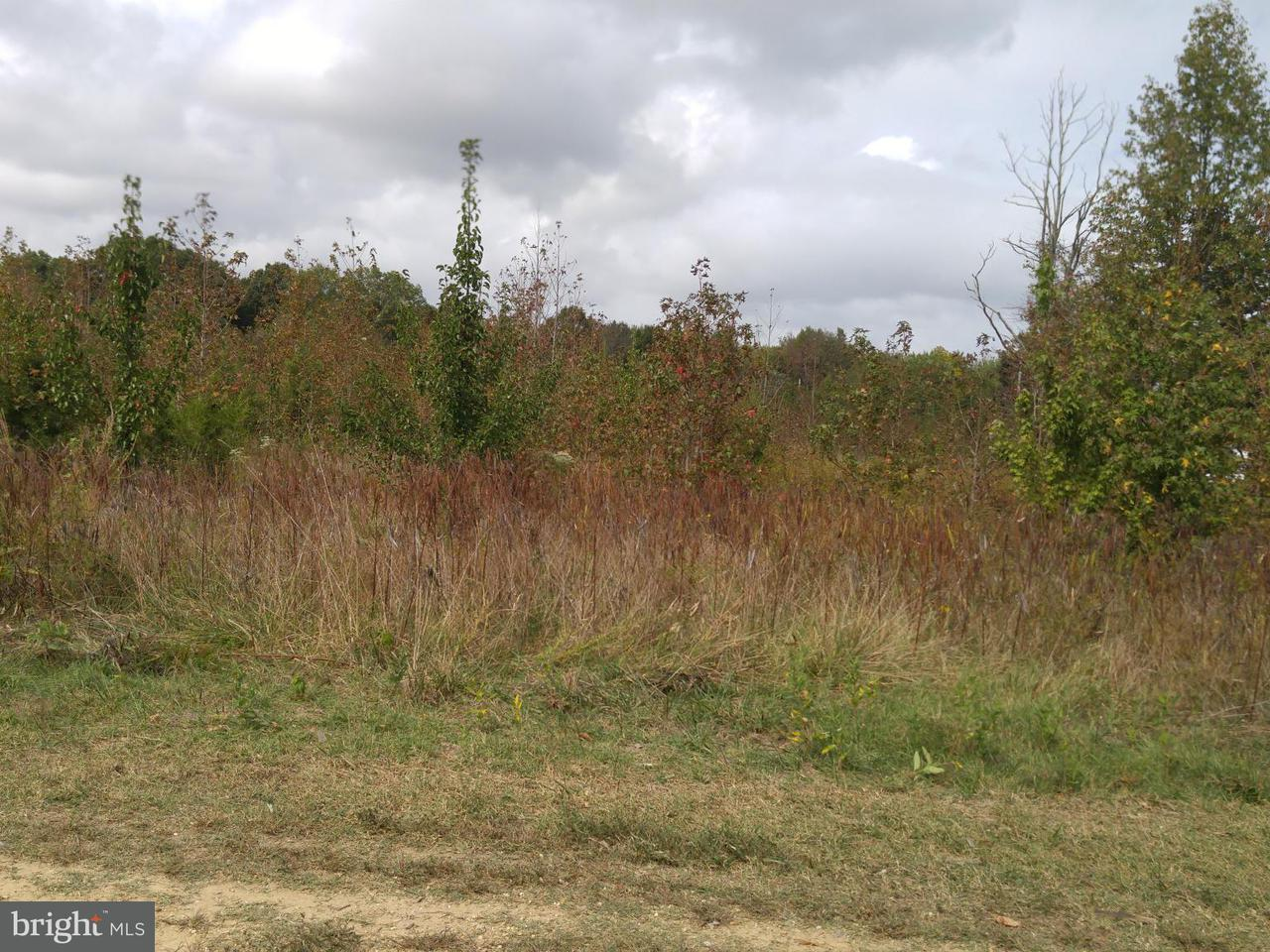 Land for Sale at 0 Davis Road And Jermaine Place Waldorf, Maryland 20601 United States