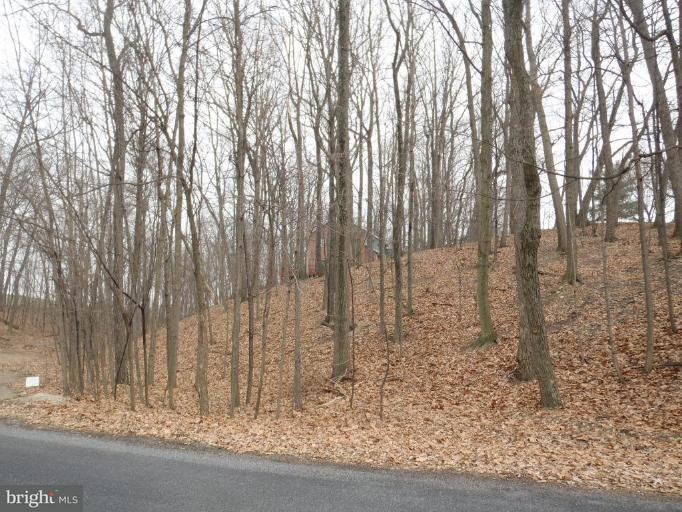 Land for Sale at 31 Theodore Dr Chambersburg, Pennsylvania 17202 United States