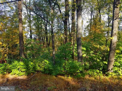 Property for sale at Massnutten, Front Royal,  VA 22630