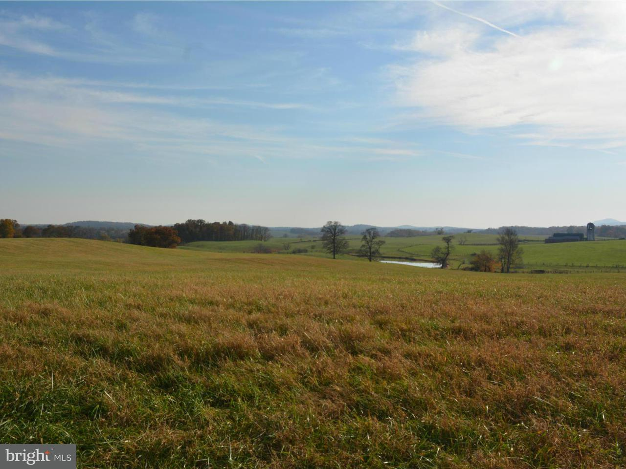 Land for Sale at Parcel C Rokeby Rd Upperville, Virginia 20184 United States