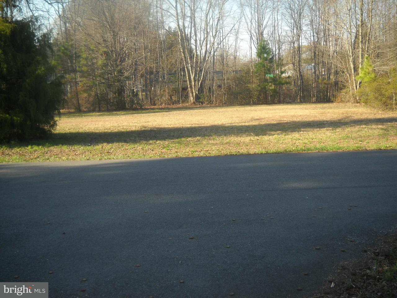 Land for Sale at Center Ave Chaptico, Maryland 20621 United States