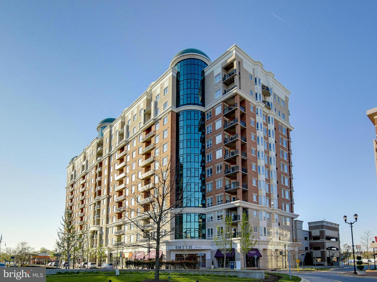 Condominium for Sale at 1915 Towne Centre Blvd #408 1915 Towne Centre Blvd #408 Annapolis, Maryland 21401 United States