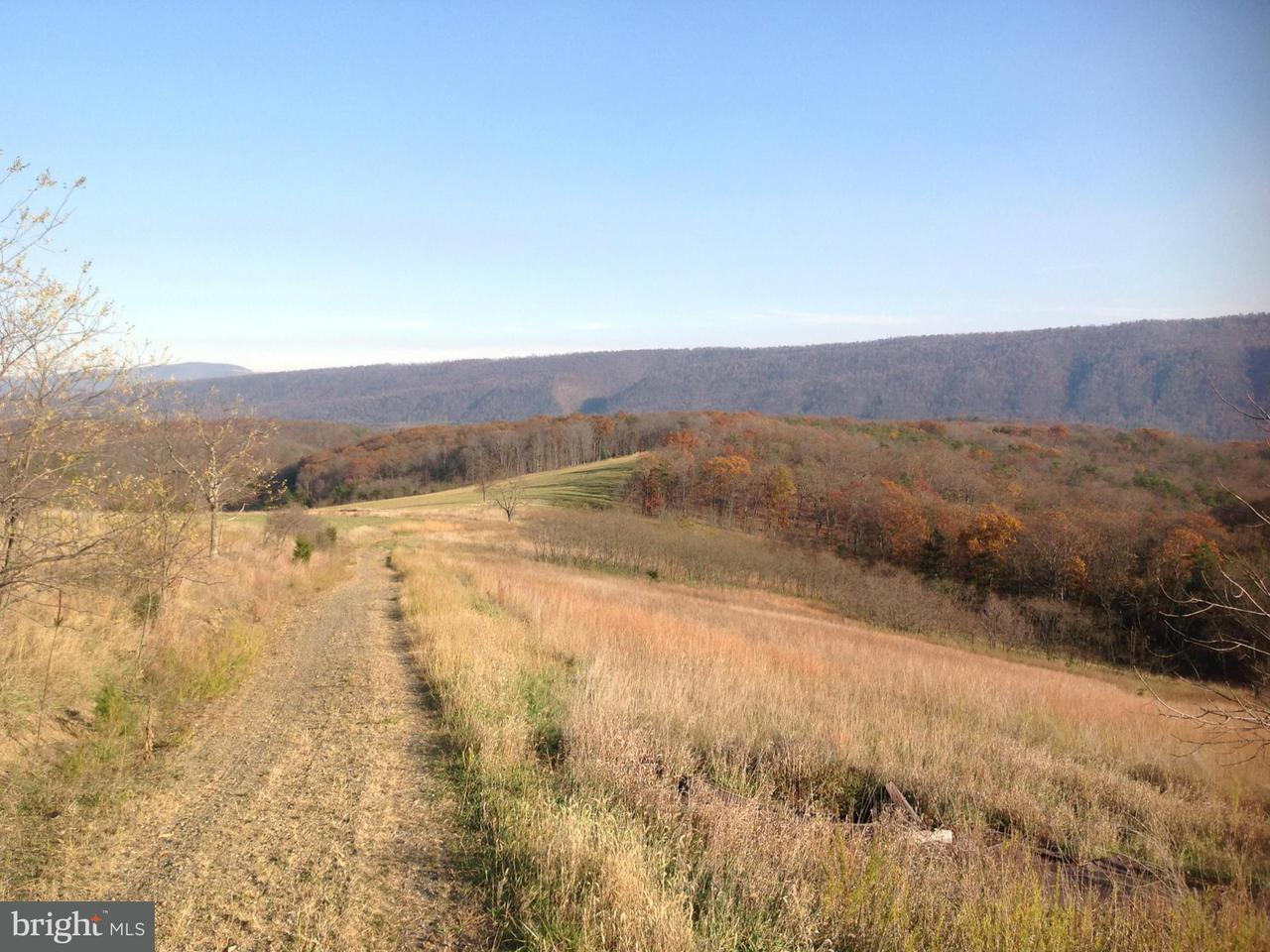 Additional photo for property listing at 2957 Ed Welch Rd  Burlington, West Virginia 26710 United States