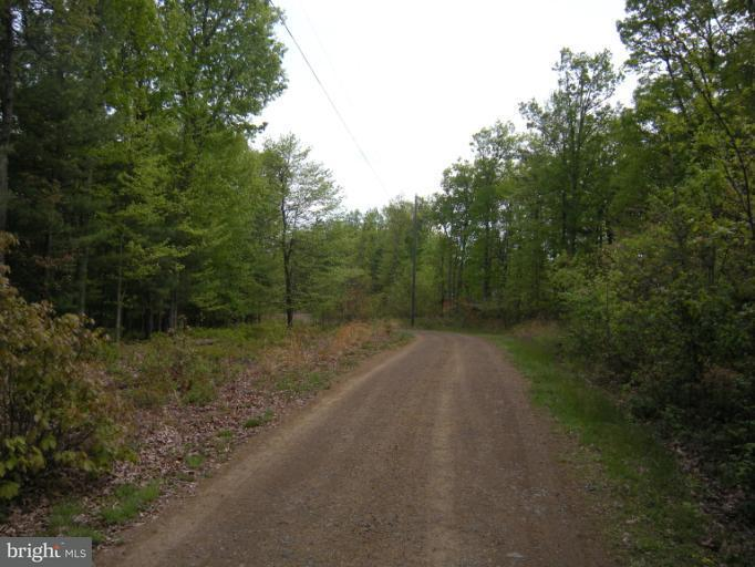 Additional photo for property listing at Farm #20 Bear Garden Trl  Capon Bridge, West Virginia 26711 United States