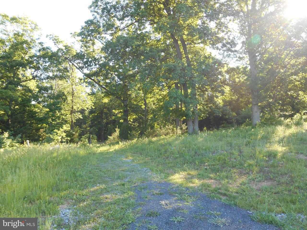 Land for Sale at Lot 33 Savannah Dr Strasburg, Virginia 22657 United States