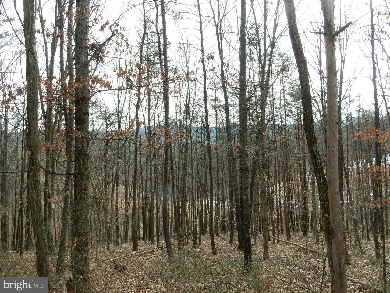 Land for Sale at Rio Grande Estate Rio, West Virginia 26755 United States