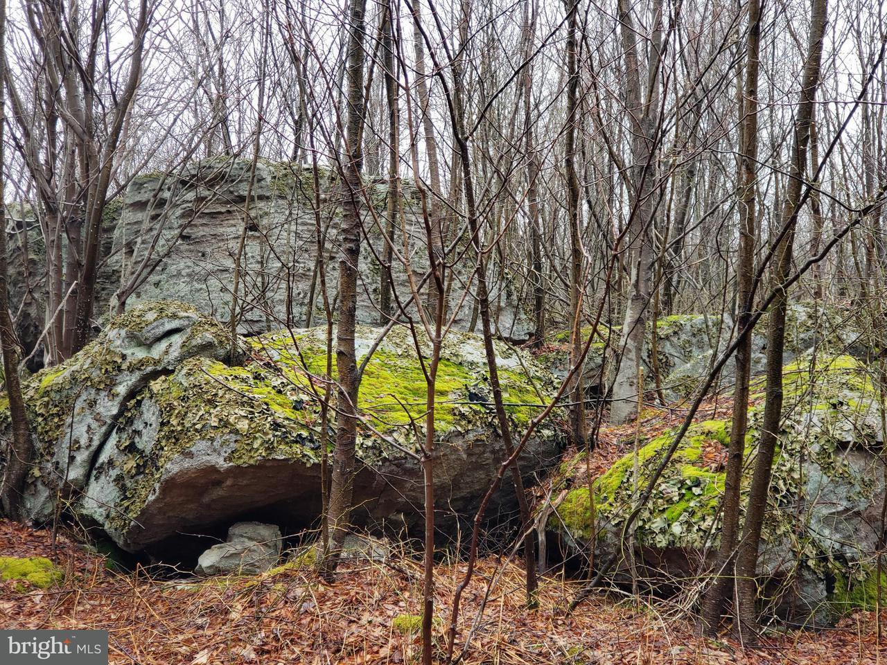 Land for Sale at Skywood Way Bittinger, Maryland 21522 United States