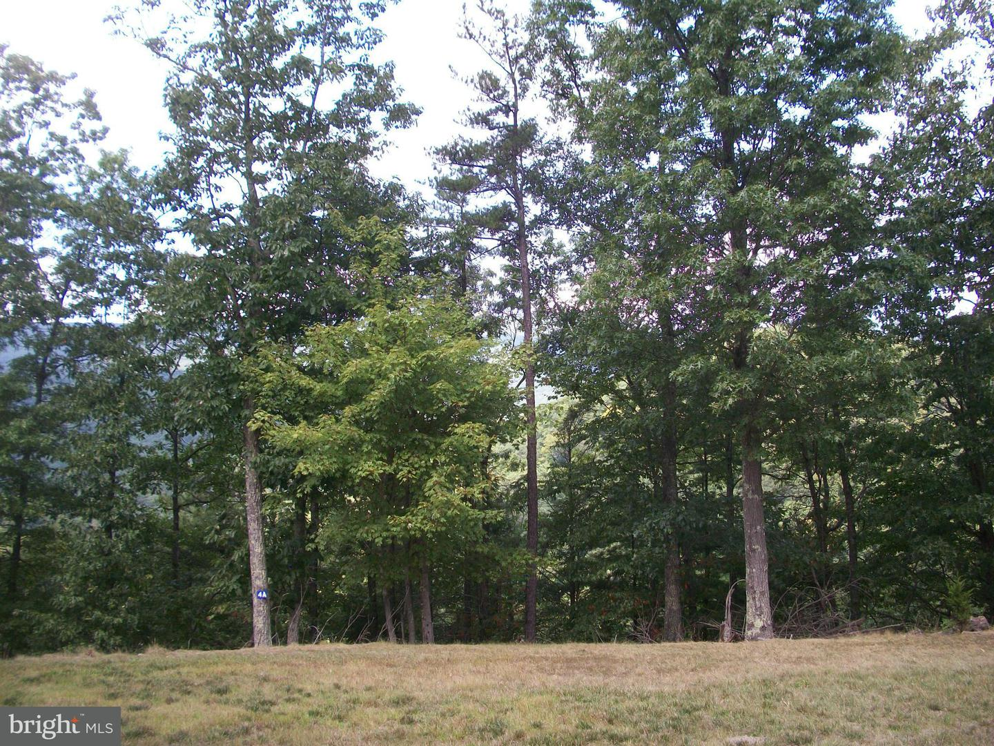 Additional photo for property listing at Wildlife Haven  Upper Tract, West Virginia 26866 United States