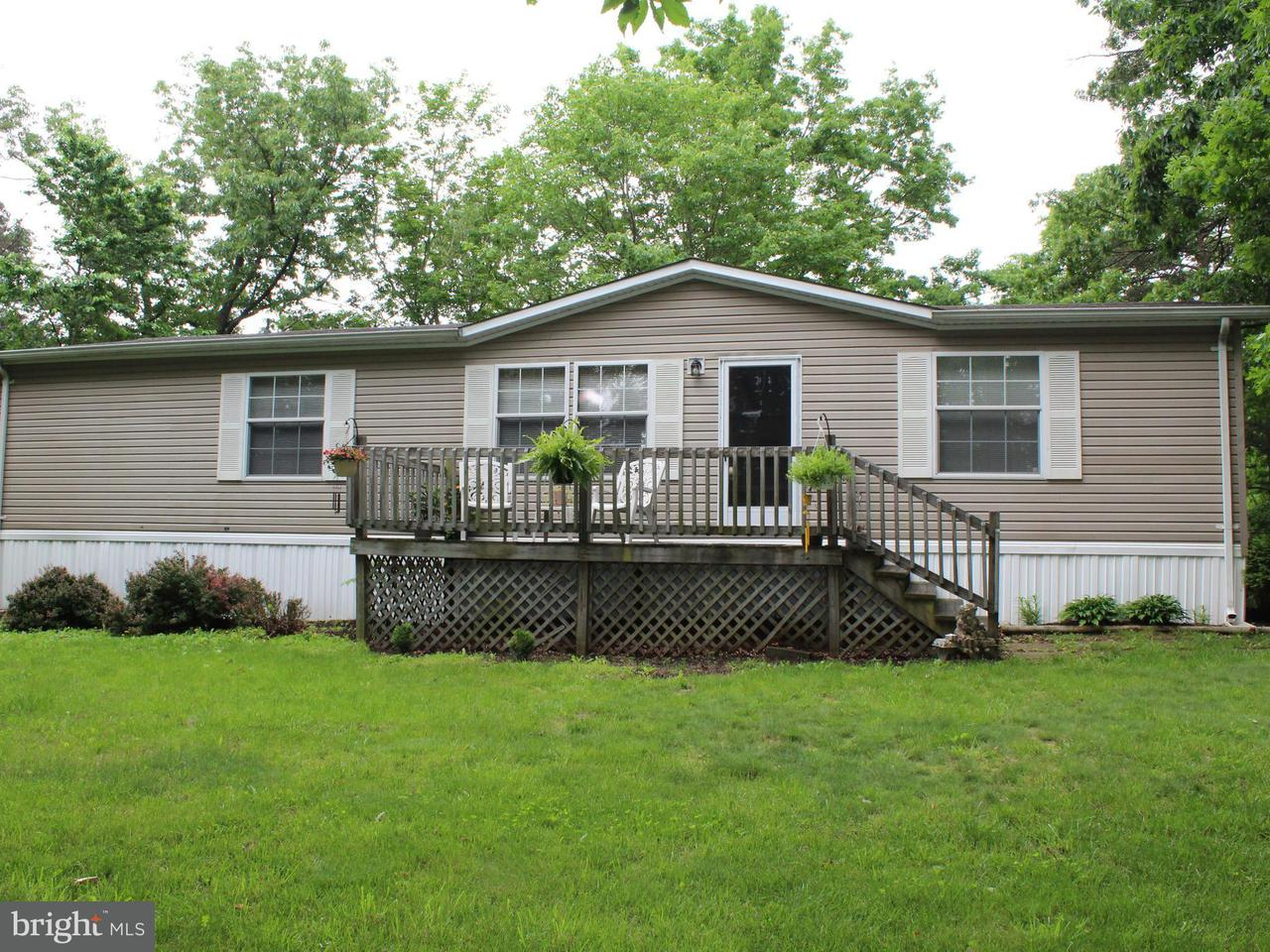 Photo of home for sale at 238 Goldizens Double D Farm Road, Maysville WV