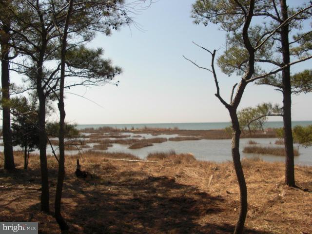 Land for Sale at Hoopers Island Road S Fishing Creek, Maryland 21634 United States