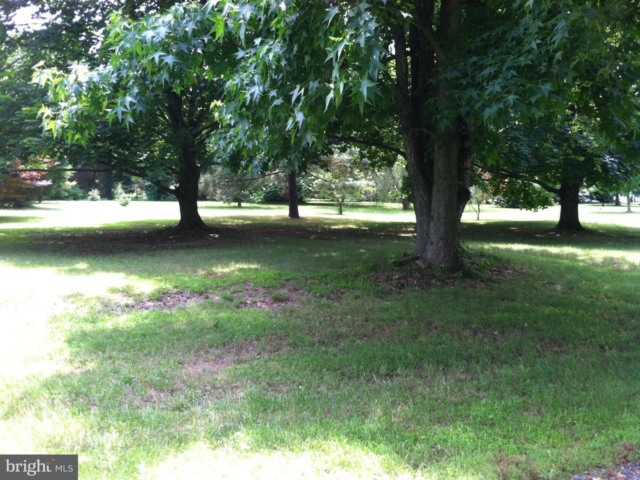 Land for Sale at Bozman Neavitt Rd Neavitt, Maryland 21652 United States