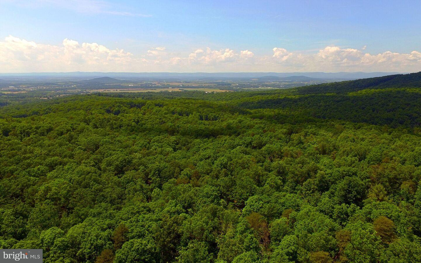 Land for Sale at Woods Chapel Road New Market, Virginia 22844 United States