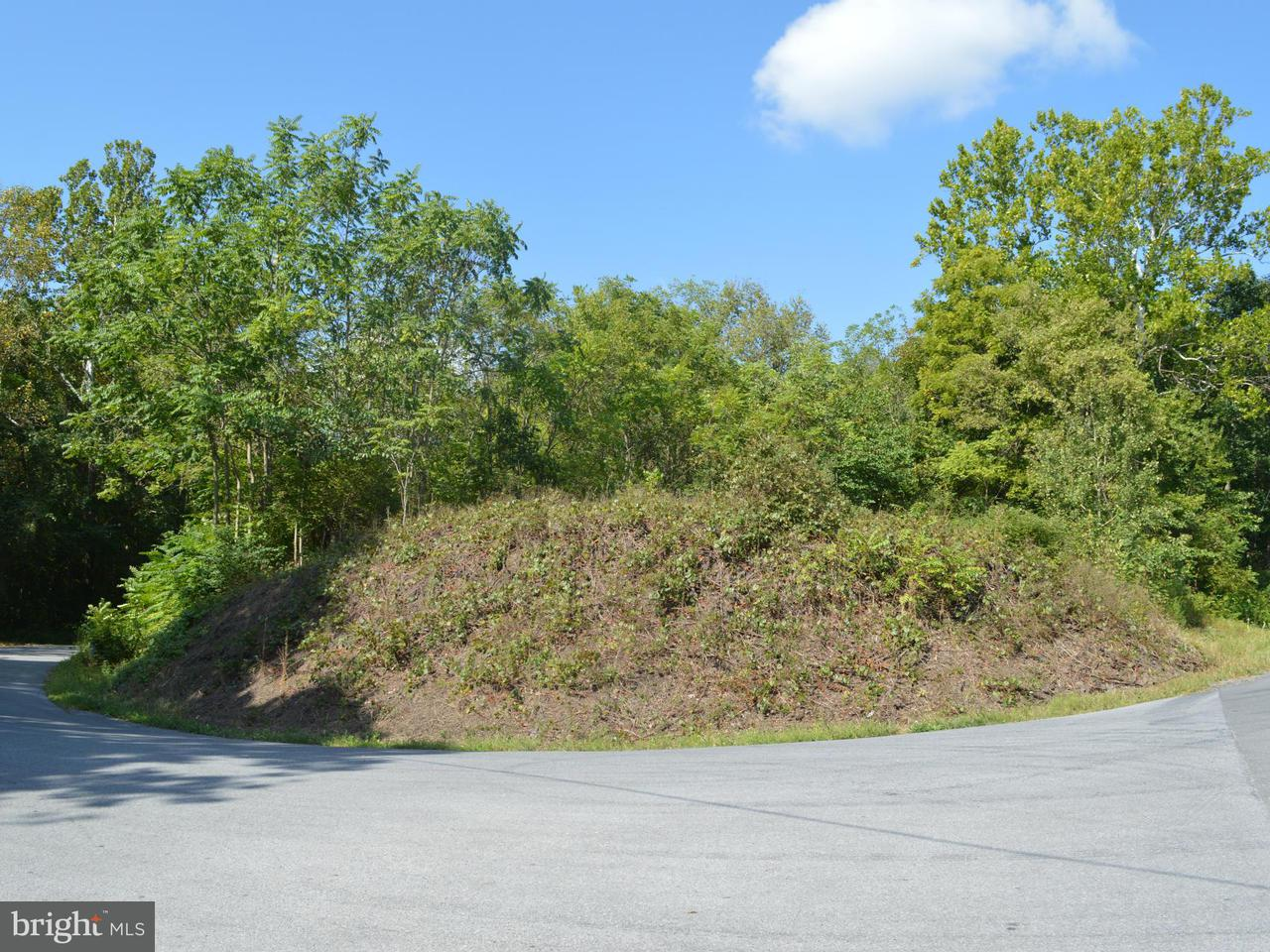 Land for Sale at River Rd Berkeley Springs, West Virginia 25411 United States