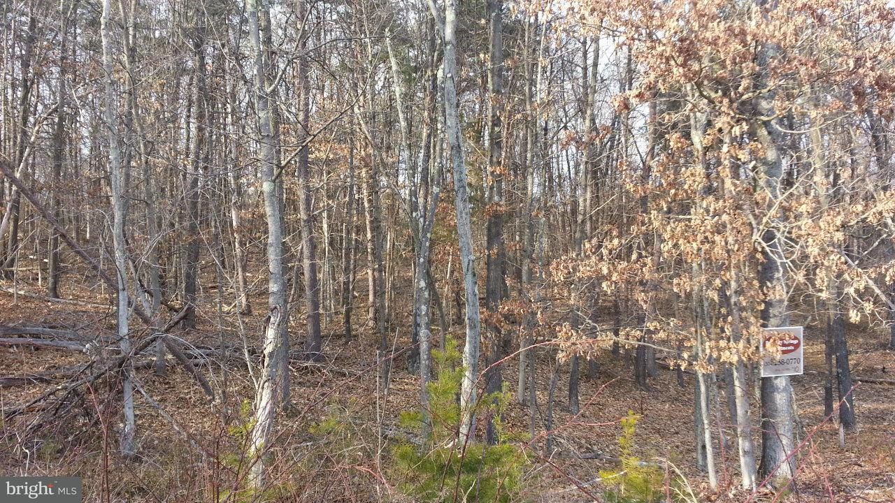 Additional photo for property listing at 10 Silage Ln  Berkeley Springs, West Virginia 25411 United States
