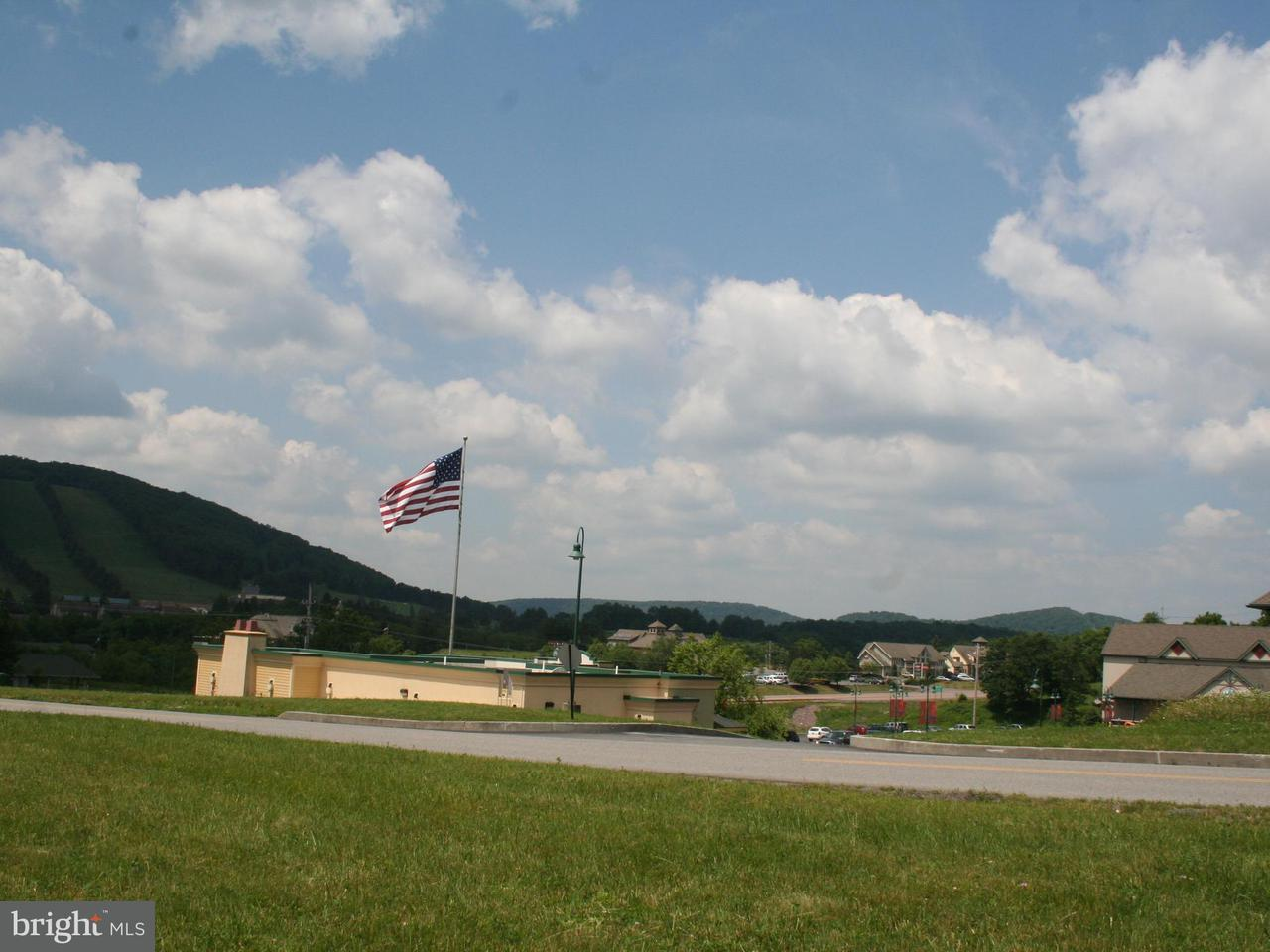 Additional photo for property listing at Northlake Dr  Mc Henry, Maryland 21541 United States