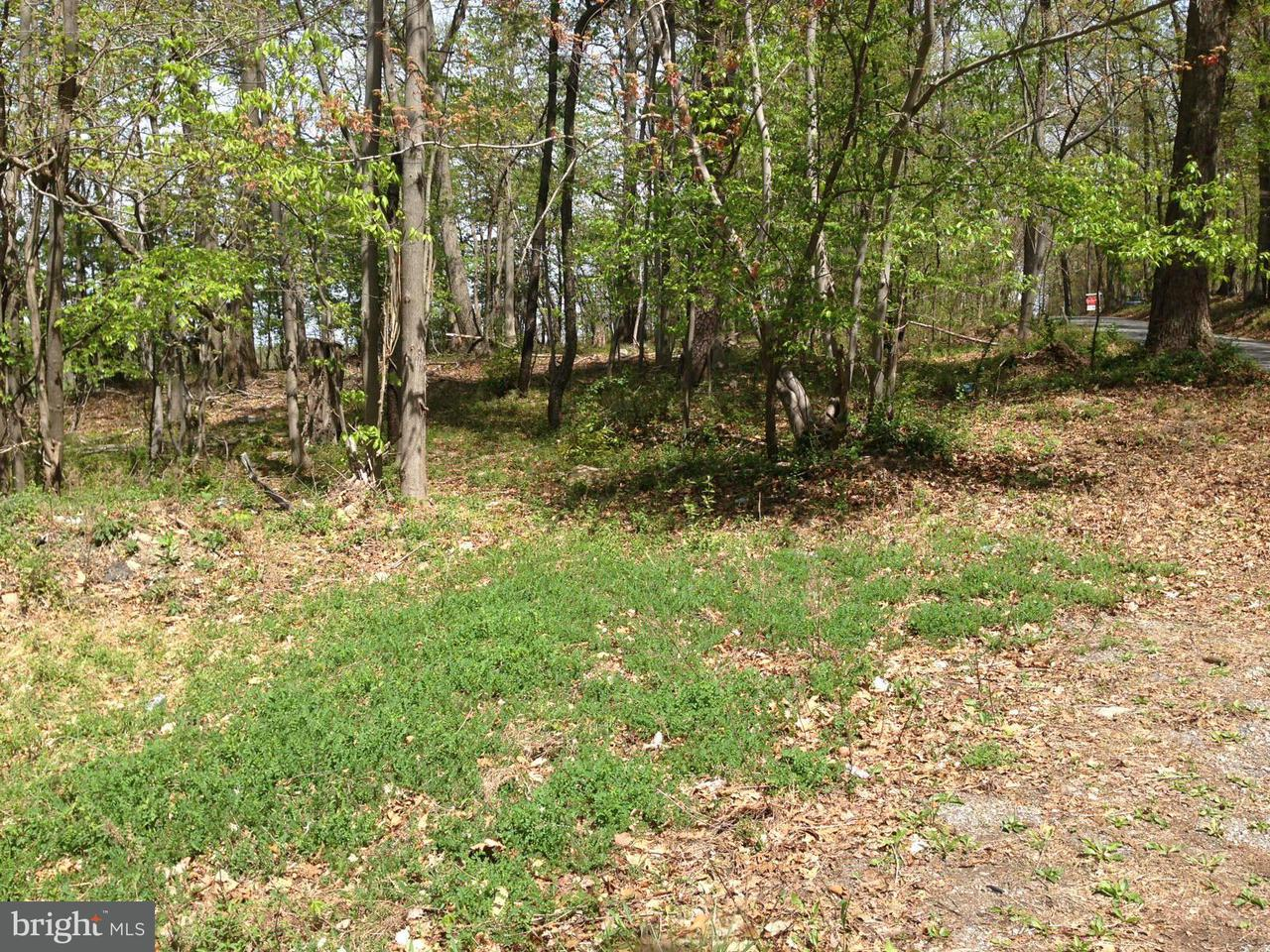 Additional photo for property listing at Parcel 44 Hoffmaster Rd  Knoxville, Maryland 21758 United States