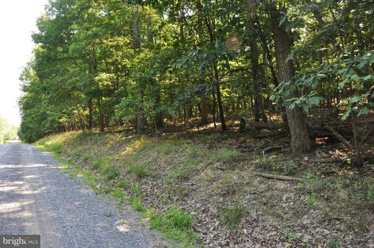 Land for Sale at 0 Sawmill Dr Gore, Virginia 22637 United States