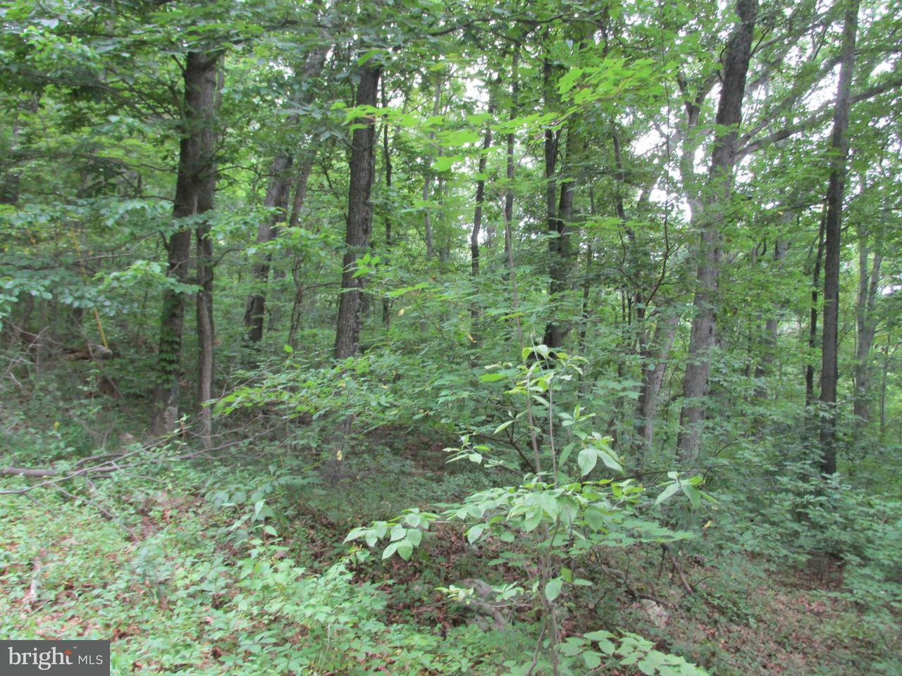 Additional photo for property listing at Cardinal Dr  Luray, Virginia 22835 United States