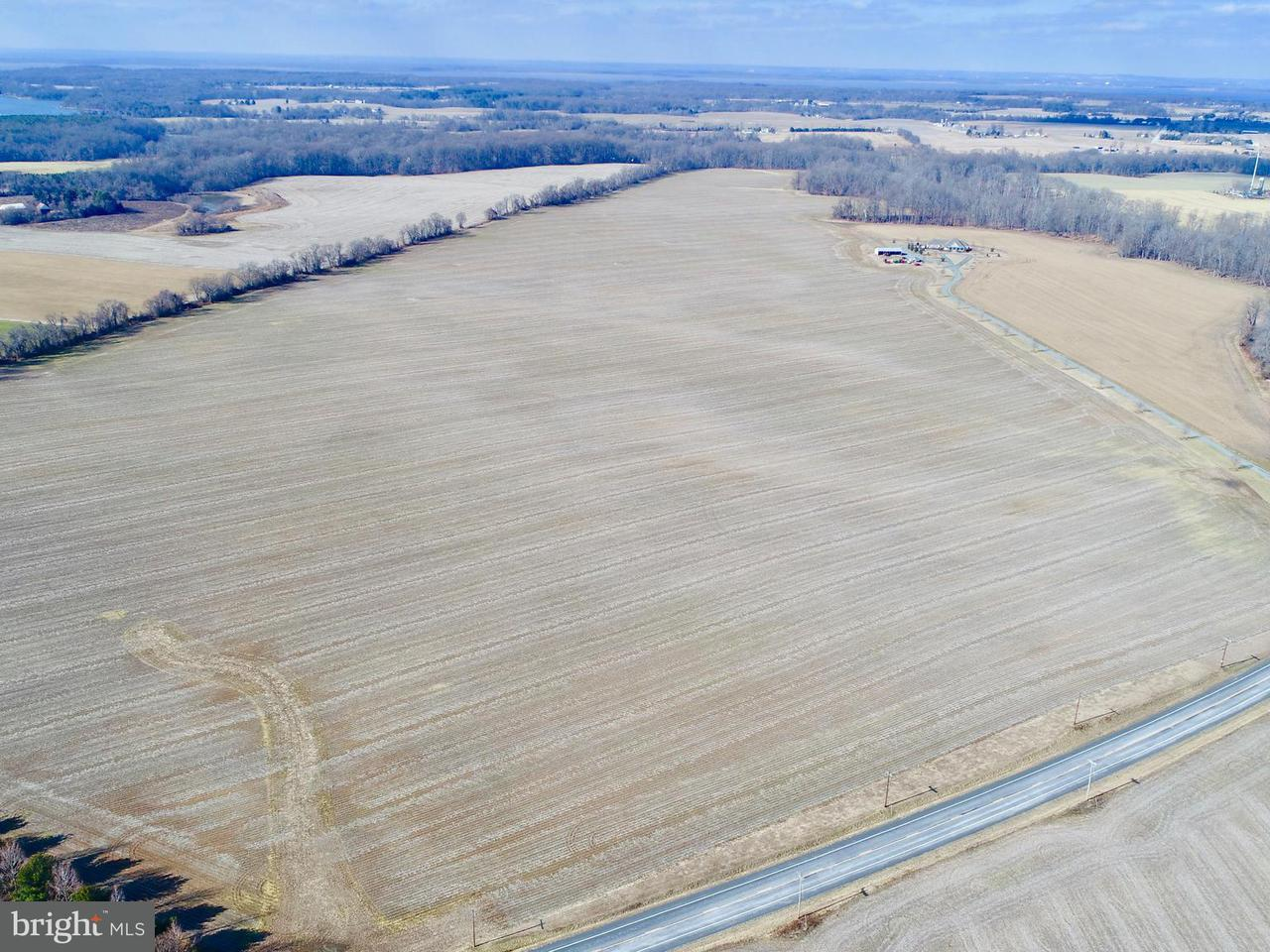 Farm for Sale at 26360 Lambs Meadow Rd Worton, Maryland 21678 United States