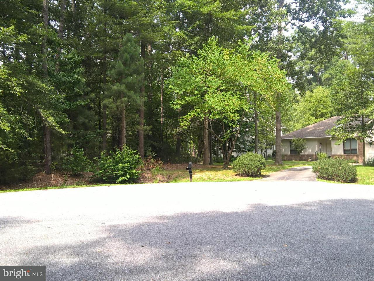 Land for Sale at 14730 Locust Ct Issue, Maryland 20645 United States