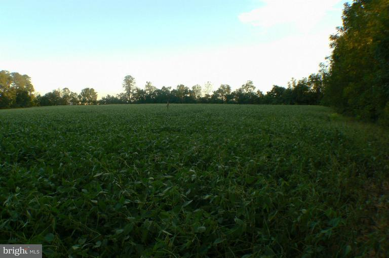 Land for Sale at 15159 North Young Rd Greencastle, Pennsylvania 17225 United States