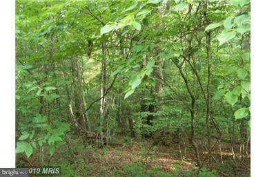 Land for Sale at Crab Apple Ln Basye, Virginia 22810 United States