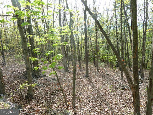 Land for Sale at 0 Supinlick Ridge Road Mount Jackson, Virginia 22842 United States