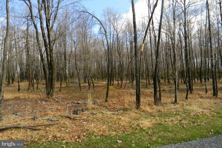Land for Sale at 19lot Winding Estates Dr Mc Henry, Maryland 21541 United States