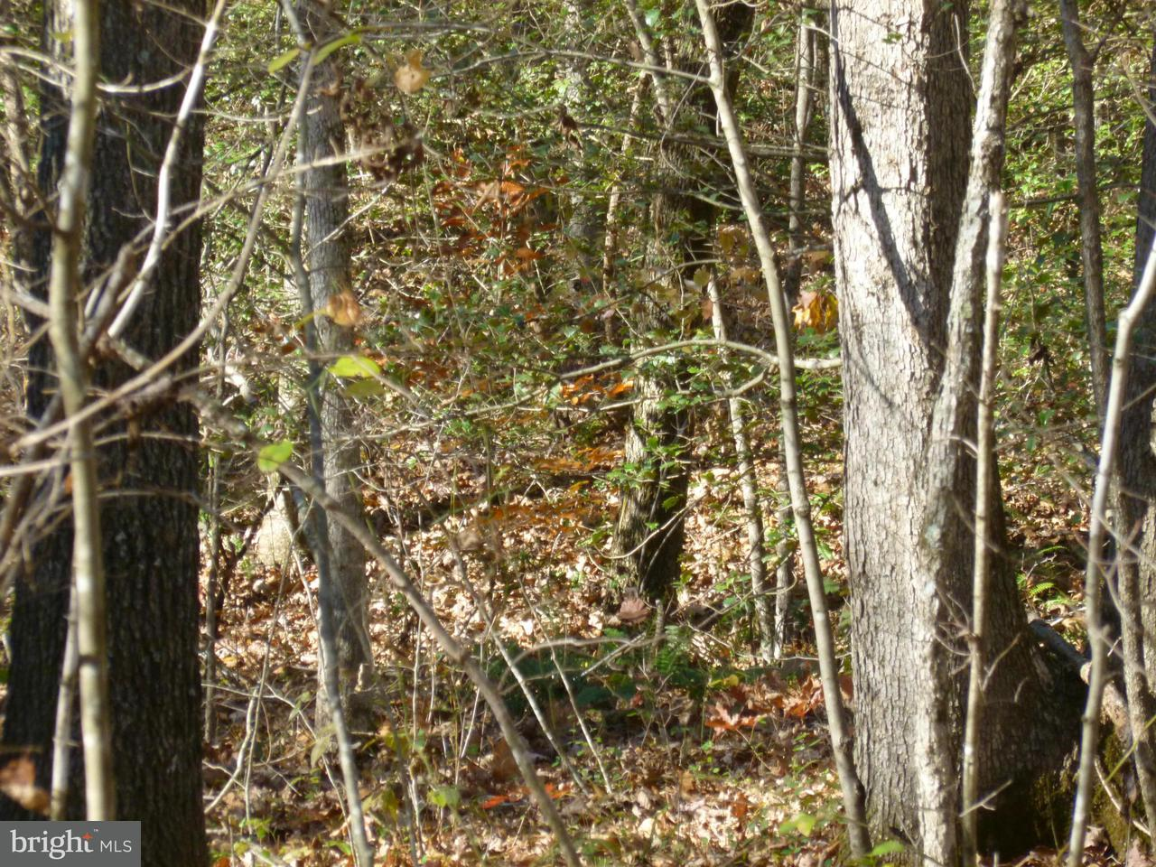 Terreno por un Venta en Sumerduck Road Sumerduck Road Sumerduck, Virginia 22742 Estados Unidos
