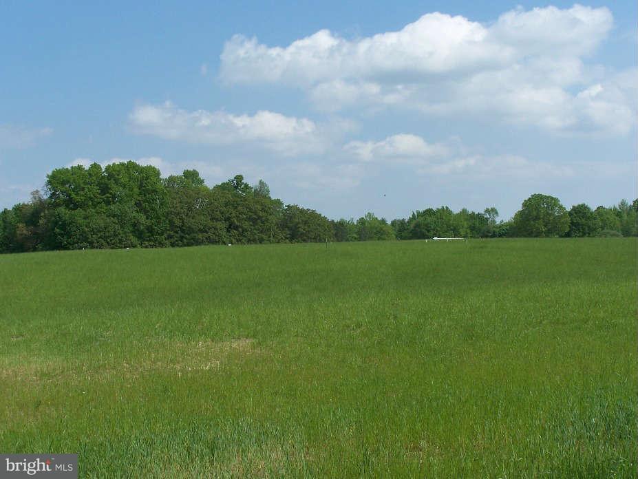 Additional photo for property listing at 17 Georgia Cir  Bumpass, Virginia 23024 United States