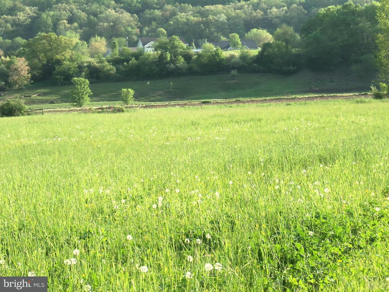Land for Sale at 10 Silver River Acres Moorefield, West Virginia 26836 United States