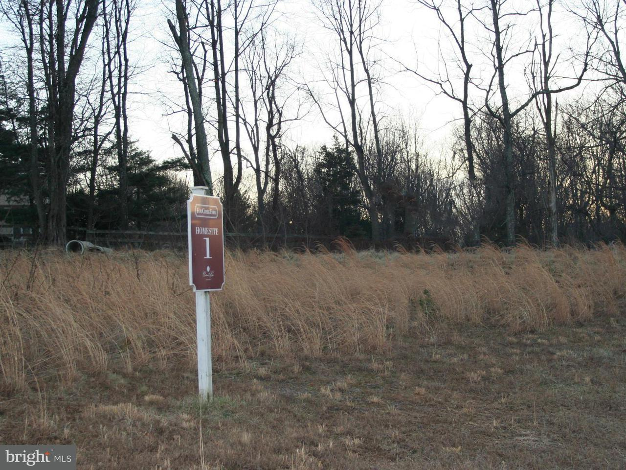 Additional photo for property listing at 11327 Fox Creek Farm Way  Great Falls, Virginia 22066 United States