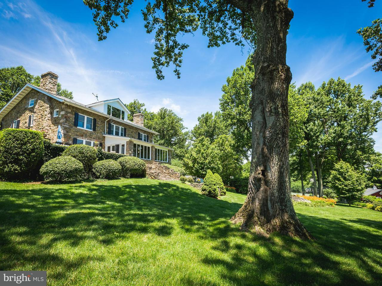 luxury real estate listings in bluemont virginia united states